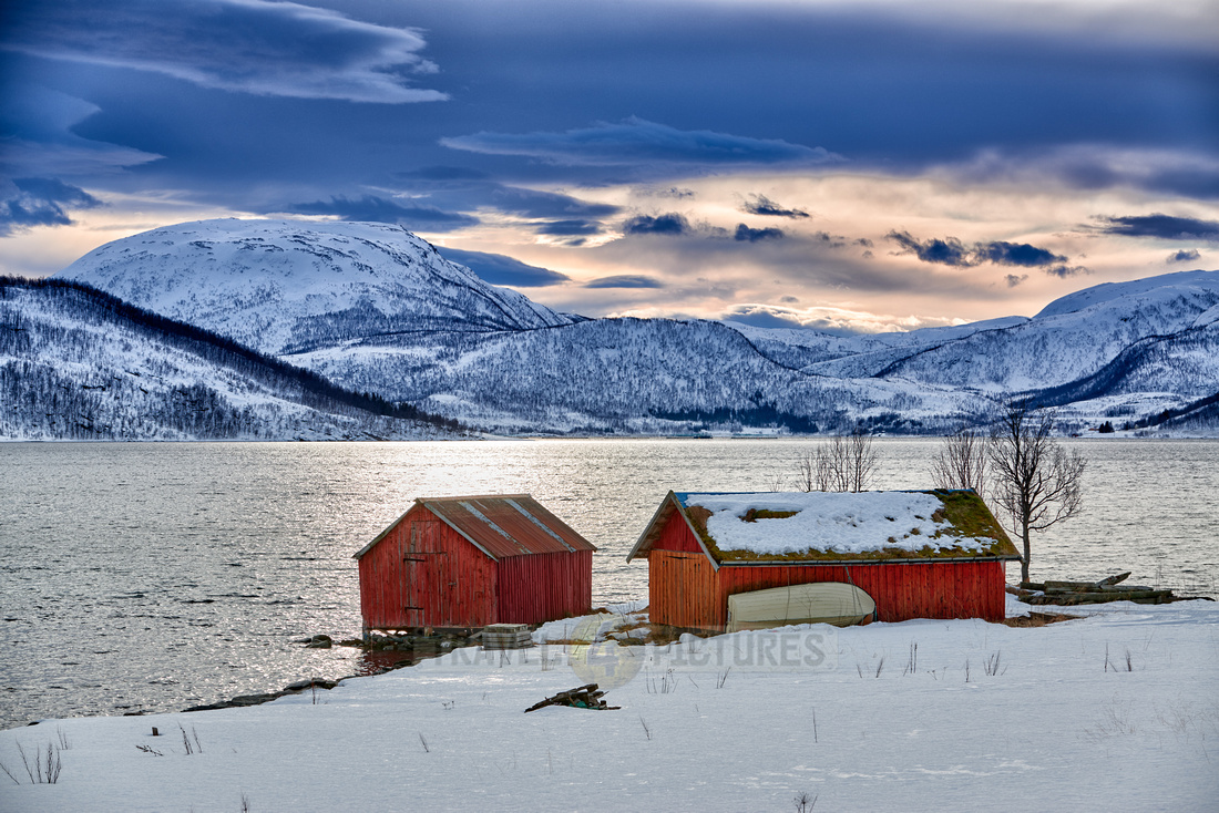 winter landscape with typical red house in Senja