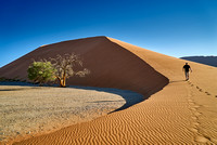 man ist walking up dune 45, desert landscape of Namib