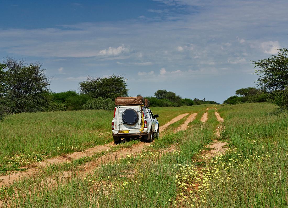 Gelaendewagen im Kgalagadi Transfrontier Park  |4x4 in Kgalagadi Transfrontier Park|