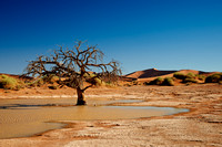 desert landscape of Namib at Sossusvlei with water inside, Namibia