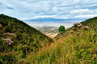 view from the rim into the Ngorongoro crater