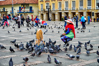 woman selling pigeon feed