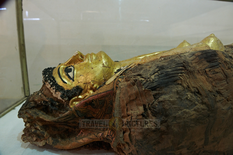 golden mummy in museum of Bahariya