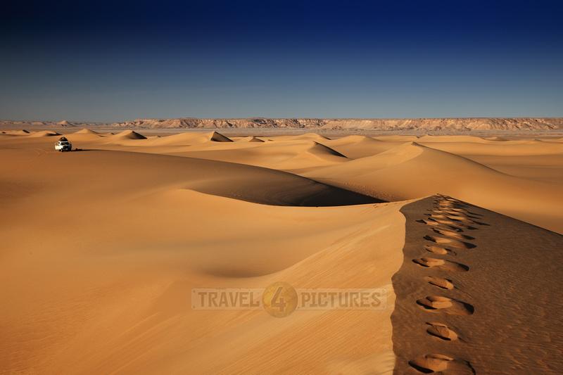 4x4 offroad car in desert landscape