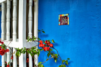 blue facade with barred window and red flower