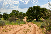 4x4 gravel road in Mabuasehube