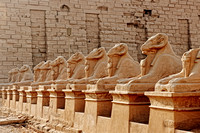 Corridor of ram-headed sphinxes at entrance
